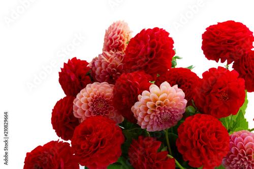 Poster Dahlia Dahlia flowers bouquet