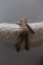 A Stuffed Animal Lying On The ...