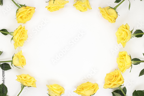 Twelve yellow roses arranged as oval frame border Yellow Roses surround the edges of white paper. Bright yellow roses with stems and leaves surround the sides of white paper as surrounding border