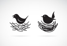 Vector Of Bird And Nests On Wh...