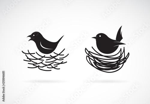 Fototapeta premium Wektor ptaków i gniazd na białym tle. Dzikie zwierzęta. Łatwe edytowanie warstwowych ilustracji wektorowych.