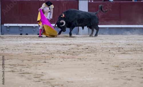 Deurstickers Stierenvechten Man bullfighter dressed in bullfighting costume.