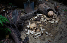 Two Skulls And Pile Bone On Th...
