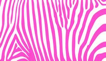Stripe Animal Jungle Texture Z...