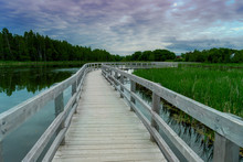 Boardwalk Over The Lake And Ma...