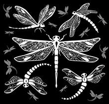 Set Of Decorative Dragonflies