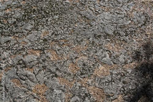 In de dag Stenen Texture of natural granite stone