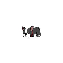 Lazy Boston Terrier Puppy Cartoon, Vector Illustration