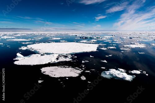 Foto op Aluminium Poolcirkel Ice pieces on the water in Arctic