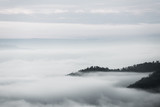 sea of clouds over the forest, Black and white tones in minimalist photography - 210936886