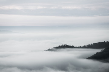Fototapeta Czarno-biały sea of clouds over the forest, Black and white tones in minimalist photography