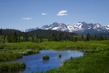 Sawtooth Mountains And Wildflowers 1916