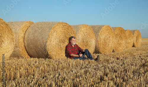 Fotomural Farmer or agronomist sitting and examining wheat field after harvest using table