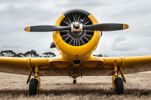 WWII Trainer Airplane