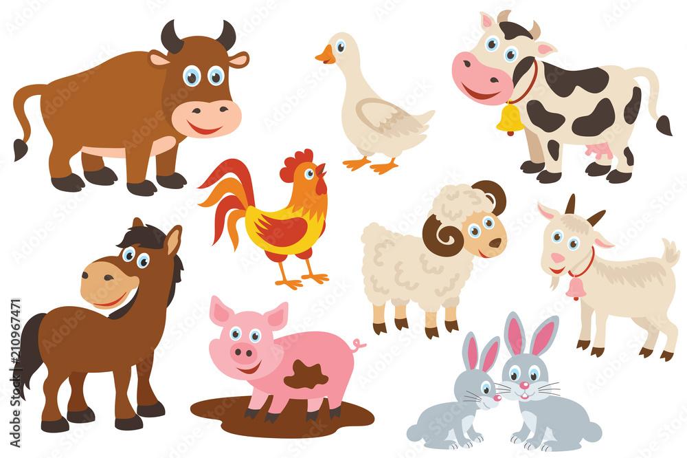 Fototapeta set of isolated farm animals -  vector illustration, eps