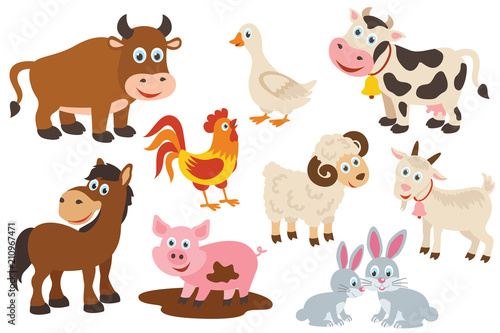 Foto set of isolated farm animals -  vector illustration, eps