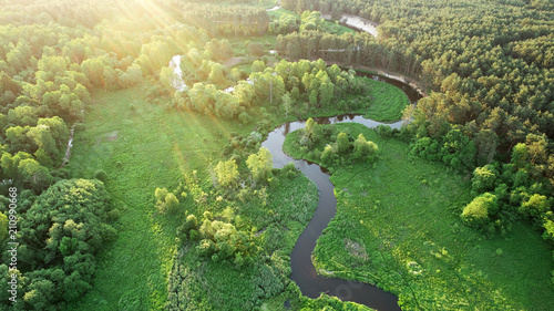 Fototapeta Aerial view from drone- river in the forest obraz