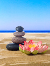 Stones And Lotus Flower On Sand