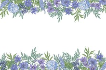 Floral Horizontal Background With Decorative Border Consisted Of Gorgeous Wild Blooming Flowers And Flowering Herbs Hand Drawn On White Background. Elegant Realistic Colorful Vector Illustration.