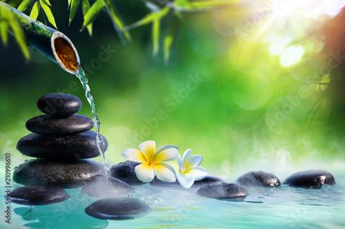 Fotobehang Zen Plumeria Flowers In Japanese Fountain With Massage Stones And Bamboo - Zen Garden