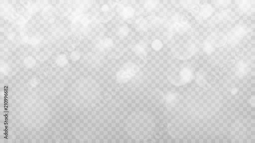 Obraz Abstract transparent light background with bokeh effects in gray colors. Transparency only in vector format - fototapety do salonu