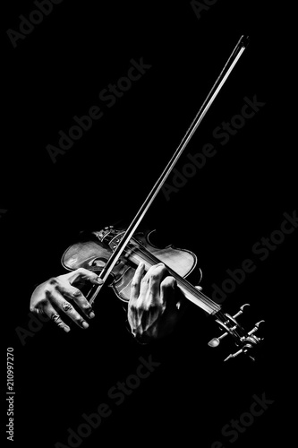 Carta da parati black and white male violinist hands playing violin, music background