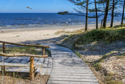 Obraz Coastal landscape with pine trees, sand dunes and site for resting, Baltic Sea      - fototapety do salonu