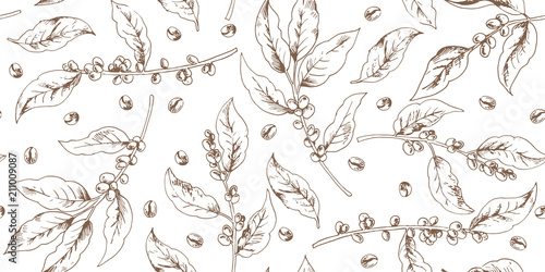 Botanical seamless pattern with coffee branches and beans Fototapeta