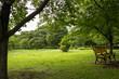 Landscape of Toneri Park in Tokyo / Toneri park is a public park in Tokyo