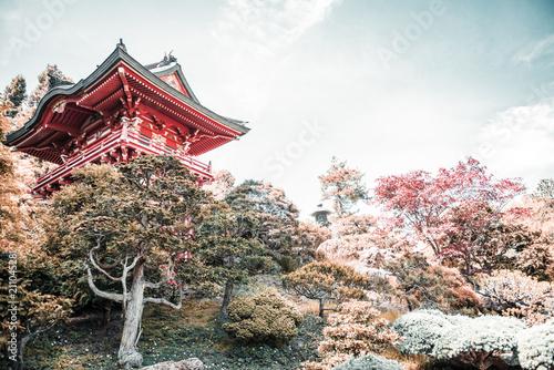 Japanese Tea Garden, San Francisco California. USA