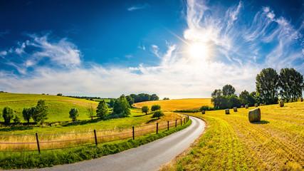 Krajobraz w lecie z jaskrawym słońcem, łąkami i złotym polem uprawnym w tle
