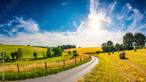 Obraz Landscape in summer with bright sun, meadows and golden cornfield in the background - fototapety do salonu