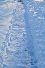 Mid Winter Trail