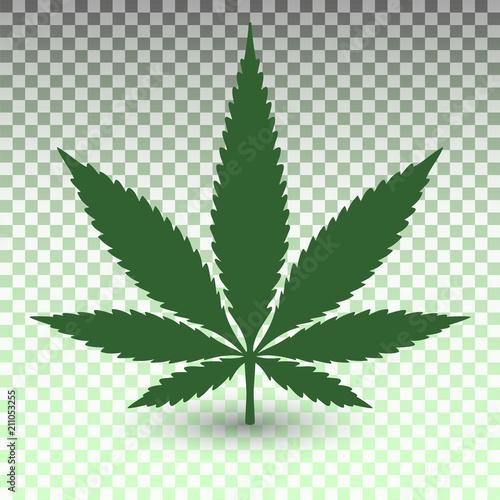 Obraz Marijuana leaf on transparent background - fototapety do salonu