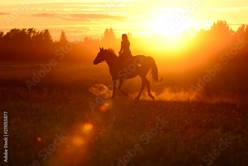Fotografia  Horse and girl, silhouette on red colorful sunset
