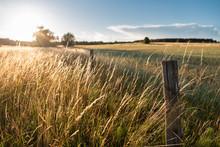 Rural Landscape On A Sunny Day