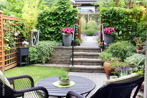 Small townhouse garden in summertime with blooming begonia and lavender flowers.