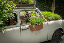 Old Car Used As Decoration In A Garden