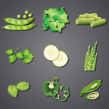 A Set Of Fresh Green Vegetable