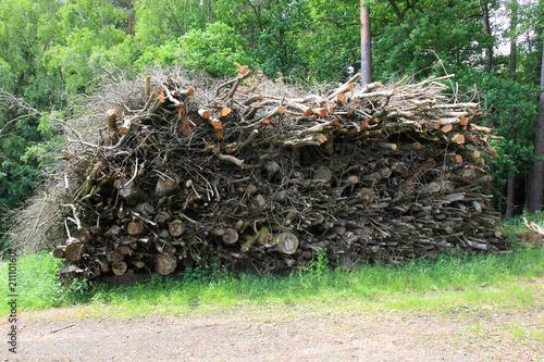 Fotografia  ein großer Haufen an Holzabfällen bei der Waldwirtschaft wartet auf den Häcksler