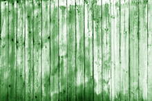Wooden Wall Texture In Green T...