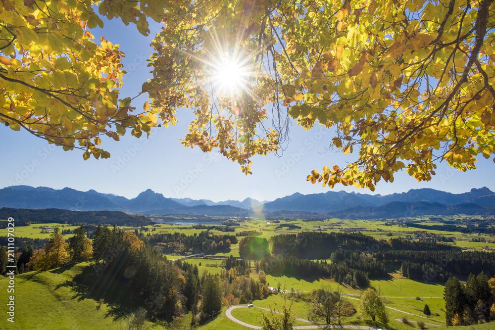 Fototapety, obrazy: Herbststimmung im Allgäu