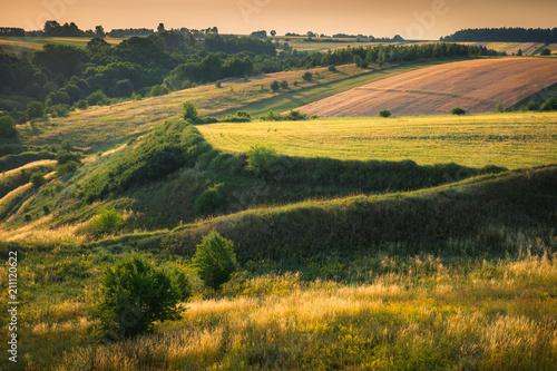 Foto auf Gartenposter Khaki Colorful meadow at sunny day on Ponidzie, Swietokrzyskie, Poland