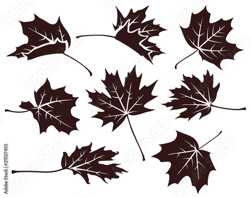 Set of decorative autumn maple leaves Canvas