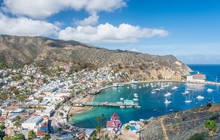 Avalon Overlook, Catalina Isla...