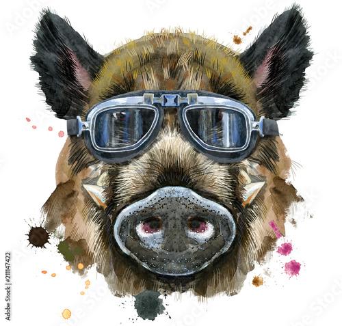 Fotografie, Obraz Watercolor portrait of wild boar