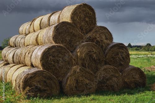 Fotografie, Obraz Pile of haystacks