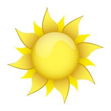 Flower Sun 7