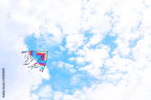 Aluminium Prints Dark grey Beautiful kite drifting in blue sky