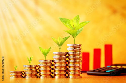 Fototapeta Stacking gold coins with plant growing on the top and red arrow graph with growing value and calculator put on the desk, for financial fund and business investment to future concept. obraz